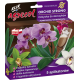 AGRECOL ORCHID STRONG REGENERUM DO STORC ZYKÓW 30 ML