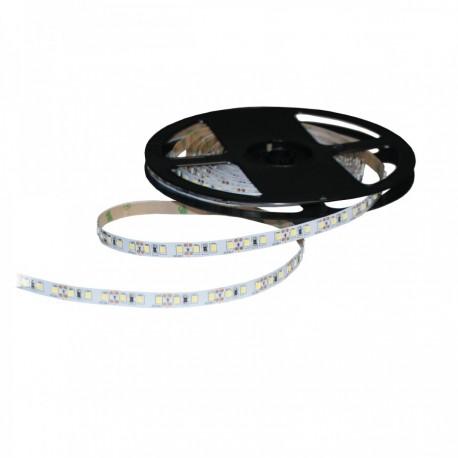 INQ Taśma LED S2835x120 12W 820lm/m 3000 K IP20 RA80 5m