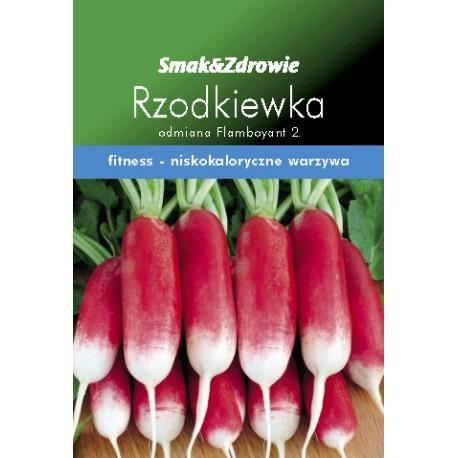 FLORALAND Rzodkiewka podłużna z bi.końce m,Raphanus sativus