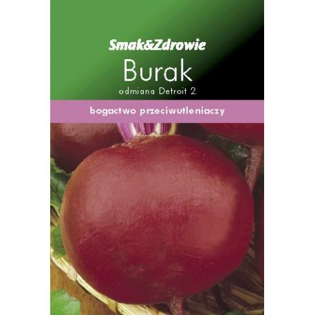 FLORALAND Burak czerwony okrągły Beta vulgaris