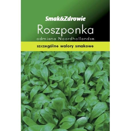 FLORALAND Roszponka Valerianella locusta