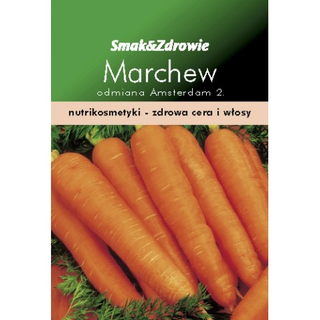 FLORALAND Marchew wczesna Daucus carota