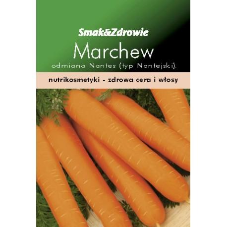 FLORALAND Marchew średniowczesna Daucus carota