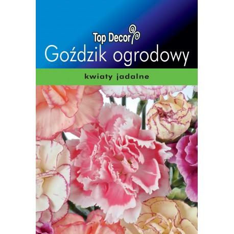 FLORALAND Goździk ogrodowy Dianthus caryophyllus