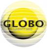 GLOBO LIGHTING GLOBO Oprawa Oświetleniowa DANA 32401 10xLED/0,06W/3V